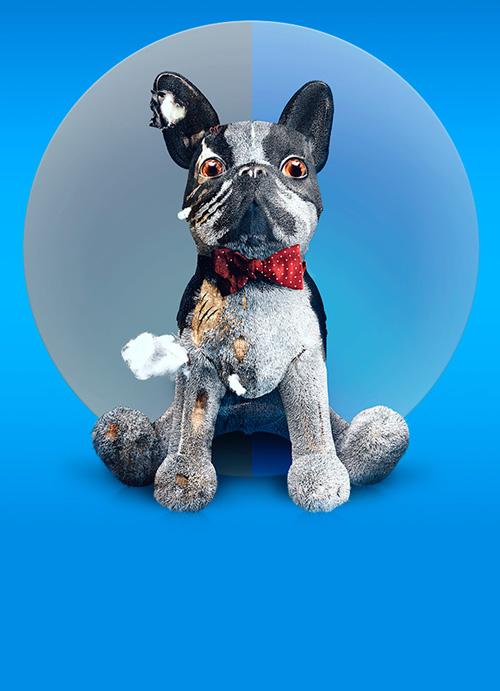 Разработка landing page препарата для собак Apokvel
